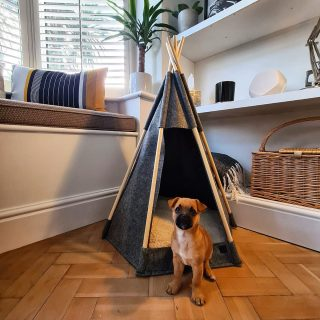 Giving this guy some work experience today, apparently he wants to get into the property/teepee game. #property #housesales #housesale #chester #estateagent #interiordesign